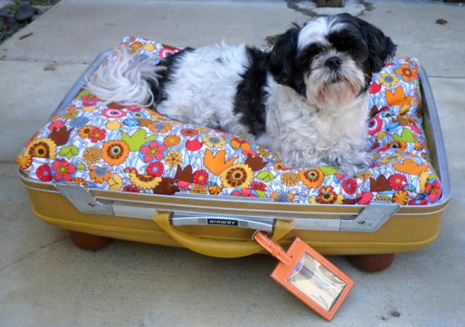 Hô biến vali cũ thành vật dụng siêu xinh 08