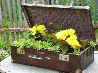 Hô biến vali cũ thành vật dụng siêu xinh 16